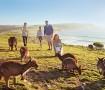 south australia viaggio per famiglie e bambini