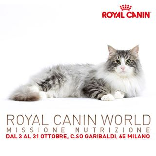 RoyalCaninWorld__0