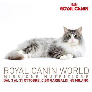 RoyalCaninWorld__0