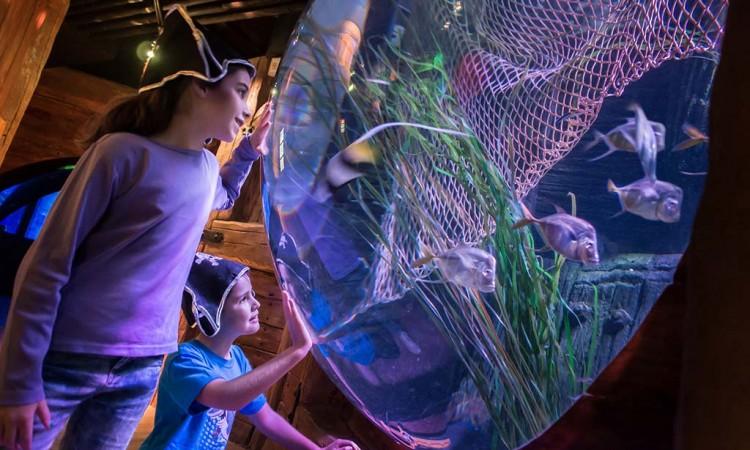 Carnevale 2017 Gardaland SEA LIFE Aquarium