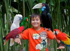 in-het-bali-bird-park-augustus-2010