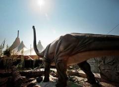 attrazioni e divertimenti al parco zoo marine di roma torvaianica