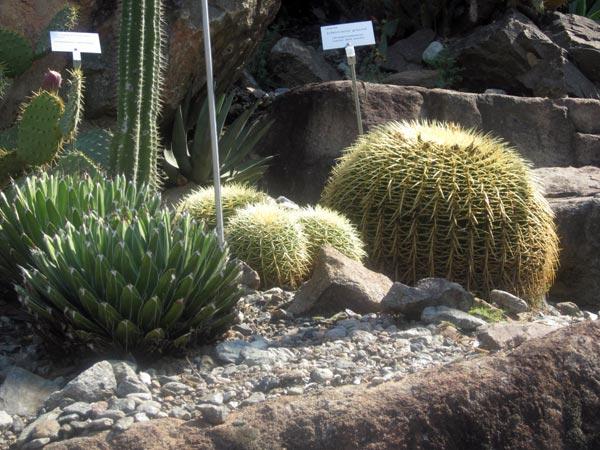 Giardini di Castel Trauttmansdorf giardino botanico merano la meraviglia dell...