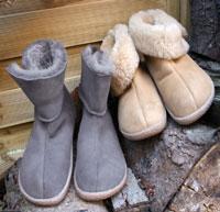scarponi haflinger lemmi