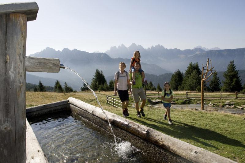 Familienwanderungen über die Eisacktaler Hochweiden, über Rossalm und Plose, mit Dolomitenpanorama.