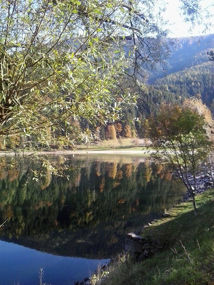 lago autunno 1