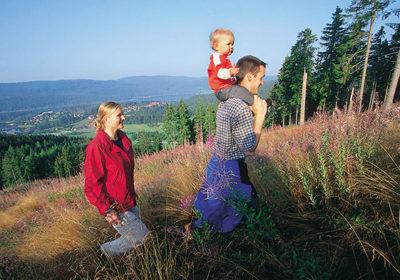 foresta nera con i bambini