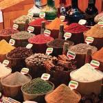 bodrum turchia spezie