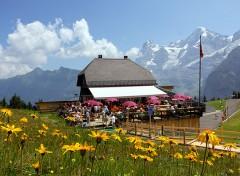 jungfrau rifugi in montagna per famiglie
