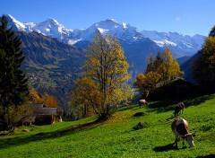 sulwald-above-isenfluh_by-jungfrau-region-jost-von-allmen