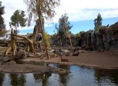 portare i bambini allo zoo di valencia