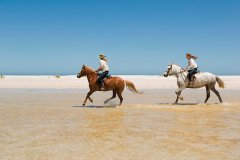 horseback-riding-on-beach_16986478951_o