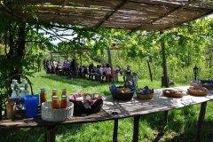 attività per famiglie in agriturismo in toscana