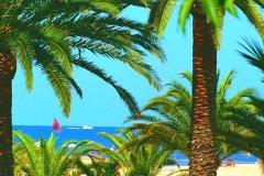 palmesbt_ok-s