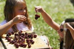 attività in agriturismo con bambini