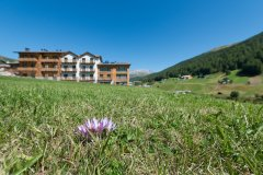 Hotel Sporting Family Hospitality - Livigno - Esterni estate (10)