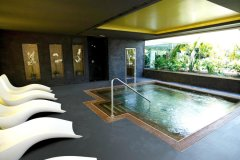 spa-wellness-01_tcm72-118301