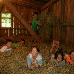 cosa fare e vedere con i bambini in germania nella foresta nera