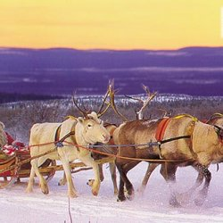 Babbo Natale Rovaniemi