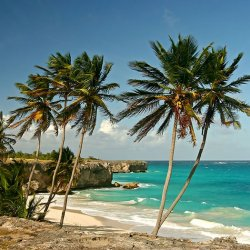 bottombay_barbados