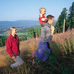 vacanze con bimbi in germania nella foresta nera