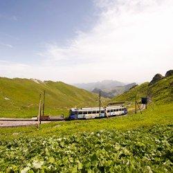 treno delle marmotte losanna svizzera