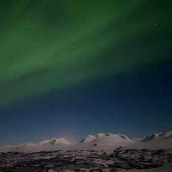 lola_akinmade_akerstrom-northern_lights-2604