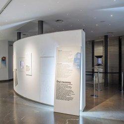 museo archeologico dell'alto adige bolzano