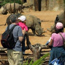 zoo bioparc di valencia