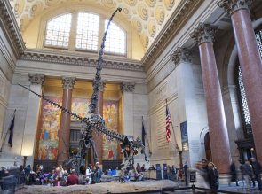 AMNH, Upper West Side, Manhattan