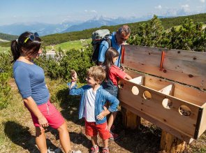 Escursioni per famiglie sul Renon, Bolzano