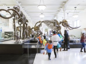 American Museum of Natural History, Upper West Side, Manhattan