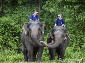 32.Lampang-Thai Elephants Conservation Centre-SJ (29)_1