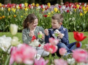 Cosa fare in Olanda con i bambini