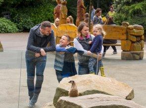 Cosa vedere in Scozia con i bambini