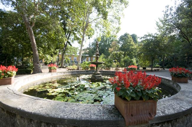 Andar Per Orti Botanici Con I Bambini
