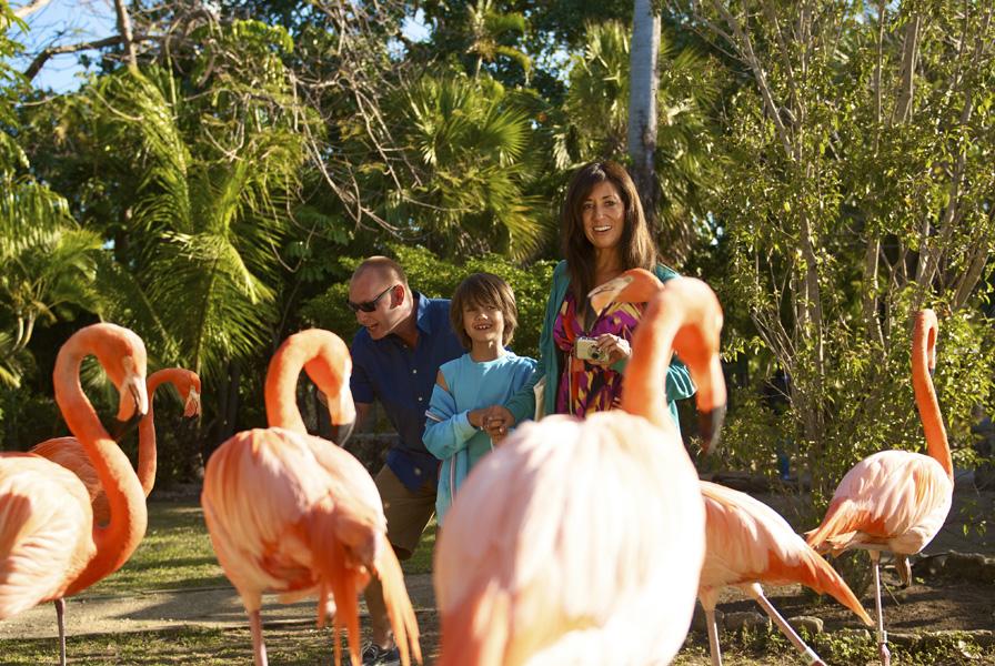 viaggio per bambini alle Bahamas