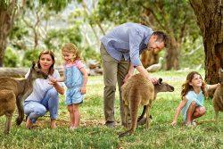 vacanze con i bambini nelle riserve naturali e i parchi del south australia