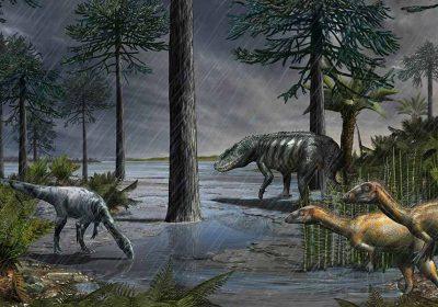 Dinosauri e Dolomiti studio del MUSE di Trento